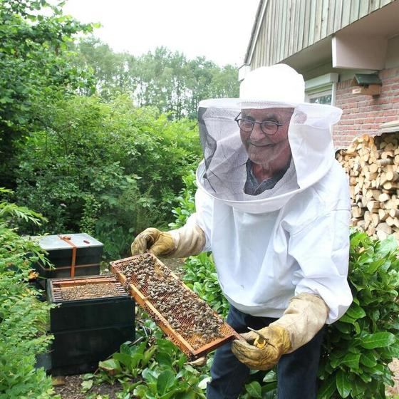 Harm Smid: 'Als imker doe je alles in slow motion. Zolang de bijen zich niet bedreigd voelen, gebeurt er weinig'.